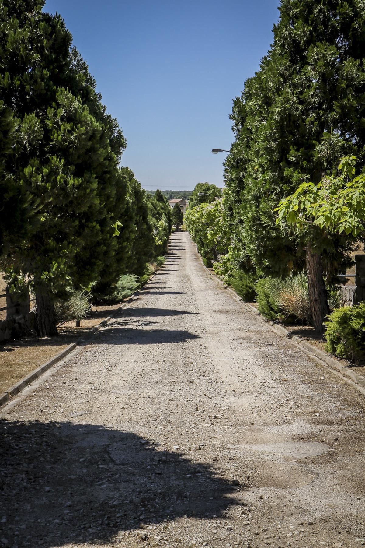 Placita camino - Finca El Campillo