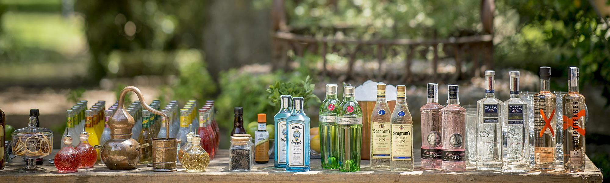 Barra gin tonics - Finca El Campillo